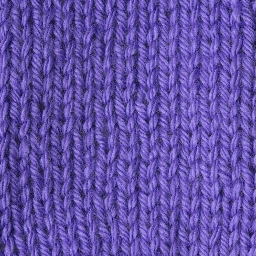 Caron Simply Soft Brights 170g Grape