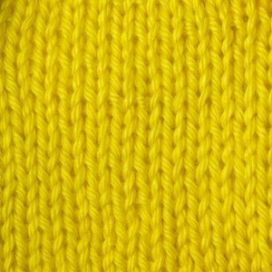 Caron Simply Soft Brights 170g Super Duper Yellow
