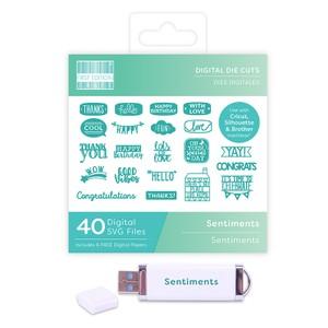 First Edition Digital Dies USB - Sentiments