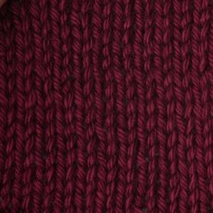Caron Simply Soft 170g Burgundy