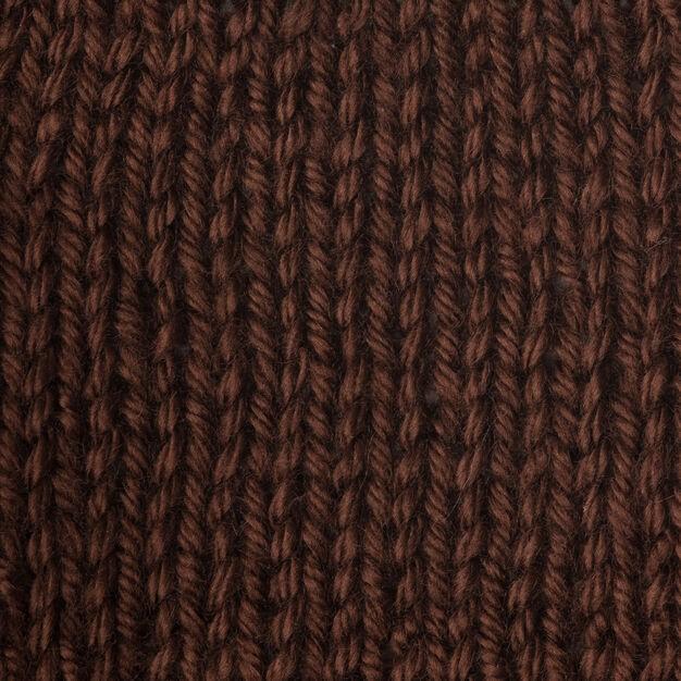 Caron Simply Soft 170g Chocolate