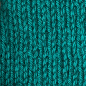 Caron Simply Soft 170g Cool Green