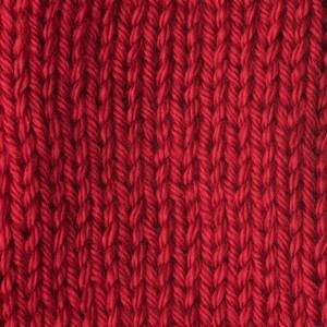 Caron Simply Soft 170g Harvest Red
