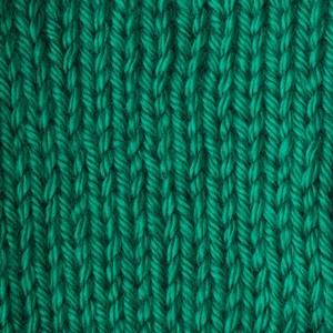 Caron Simply Soft 170g Kelly Green
