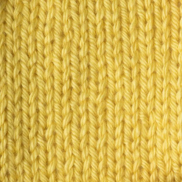 Caron Simply Soft 170g Lemonade