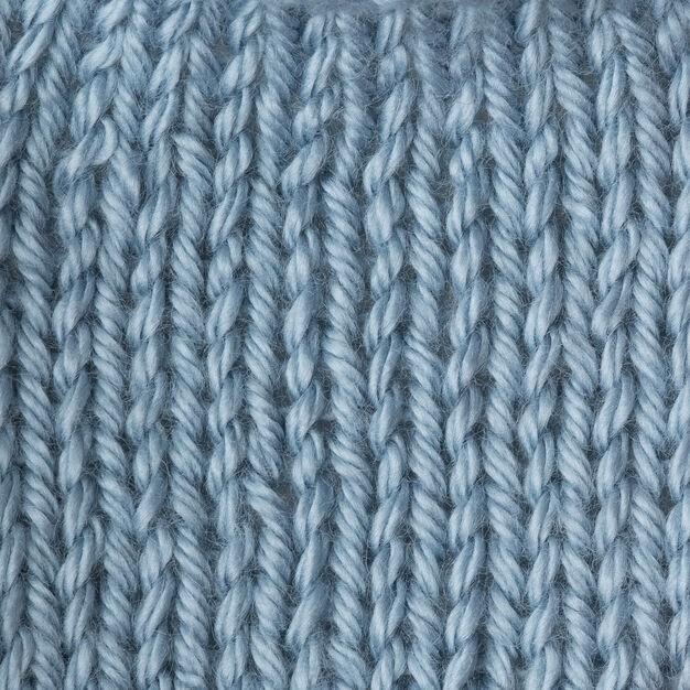 Caron Simply Soft 170g Light Country Blue