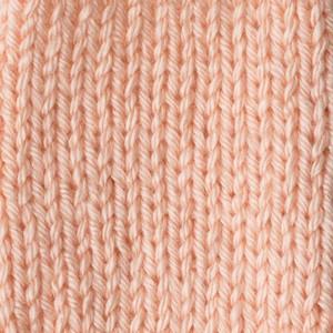 Caron Simply Soft 170g Light Country Peach