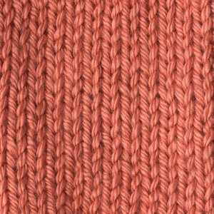 Caron Simply Soft 170g Persimmon