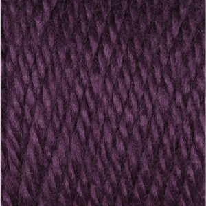 Caron Simply Soft 170g Plum Perfect
