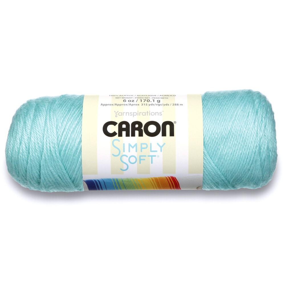 Caron Simply Soft 170g Robins Egg