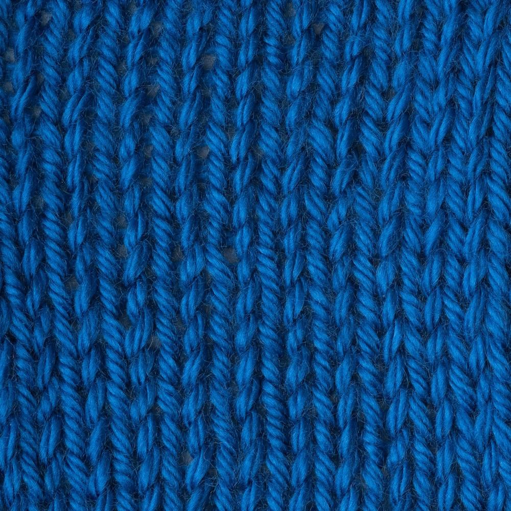 Caron Simply Soft 170g Royal Blue
