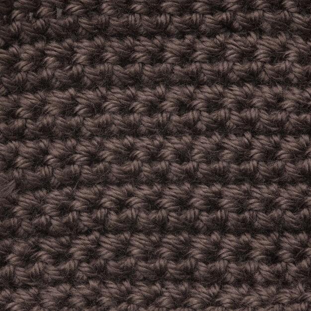 Caron Simply Soft 170g Taupe